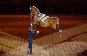 Equitation de tradition française