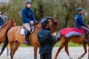 Training – jobs and carreer in horse industry