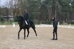 Pédagogie et entraînement du cavalier