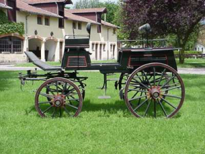 Carriages, horse vehicles