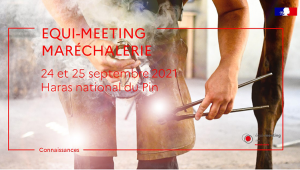 Conferences from the Equi-meeting maréchalerie 2021