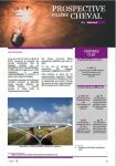 Prospective filière cheval - n°2 - Juillet 2018