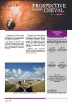 Prospective filière cheval - n°9 - Mai 2020