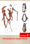 The harness for draught horses