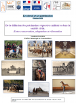 XIe Journée du Comité pour les patrimoines du cheval