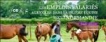 Les emplois salariés agricoles dans la filière équine - Focus Normandie