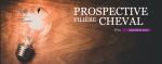 Prospective filière cheval - n°11 - Novembre 2020