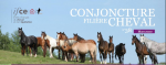 Conjoncture filière cheval n°38 Mars 2020