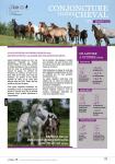 Conjoncture filière cheval n°37 Décembre 2019
