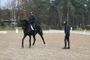 Rider's teaching and training