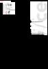 16181_1.0.0.pdf - application/x-pdf
