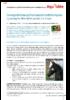16807_equidee-article2-aout15_1.0.0.pdf - application/x-pdf