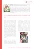 §E06027_P30-32_1.0.0.pdf - application/pdf