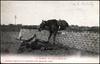 Saumur. - Une chute au Mur du Breil