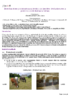 17492 - application/pdf