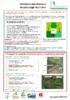 17643 - application/pdf