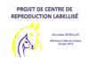17650 - application/pdf