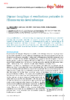 16768_equidee-Article2-juin15.pdf - application/pdf