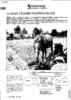 11373.pdf - application/pdf