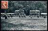Saumur. - Carrousel militaire, la Reprise des Sauteurs