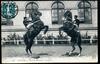 Saumur. - Ecole de Cavalerie, Courbettes.