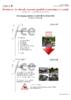 17897 - application/pdf