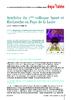 18041 - application/pdf