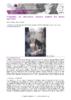 JSIE2019-P1-Bigot - application/pdf