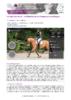 JSIE2019-A2-Guillaume - application/pdf