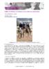 JSIE2019-P9-Billat - application/pdf