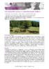 JSIE2019-2-Valenchon - application/pdf