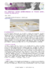 JSIE2019-A6-Lefebvre - application/pdf