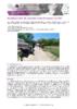 JSIE2019-2-Ricard - application/pdf