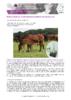 JSIE2019-P12-Wimel - application/pdf