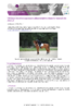 JSIE2019-D1-Lansade - application/pdf