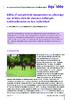 20077 - application/pdf
