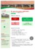 20100 - application/pdf