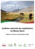 20123 - application/pdf