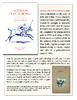 Polo_tearsheet1-2.pdf - application/pdf