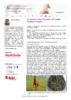 20695 - application/pdf