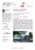 20702 - application/pdf