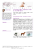 20713 - application/pdf