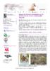 20736 - application/pdf