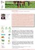 20751 - application/pdf