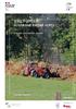 20767 - application/pdf